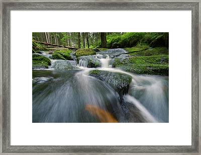 Bode, Harz Framed Print by Andreas Levi