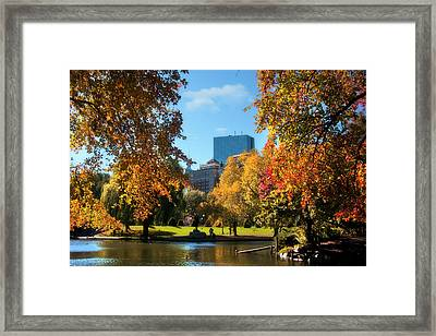 Boston Public Garden In Autumn Framed Print by Joann Vitali