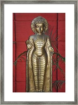 Buddha 1 Framed Print by Vijay Sharon Govender