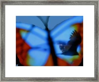 Butterfly Birds Collection  Framed Print by Debra     Vatalaro