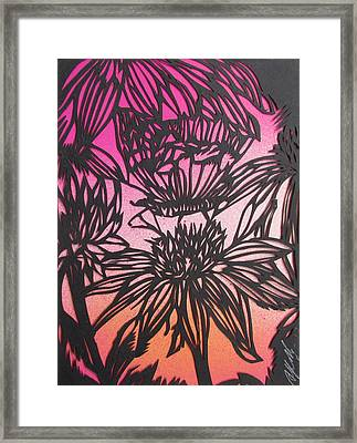 Butterfly With Coneflower Framed Print by Alfred Ng