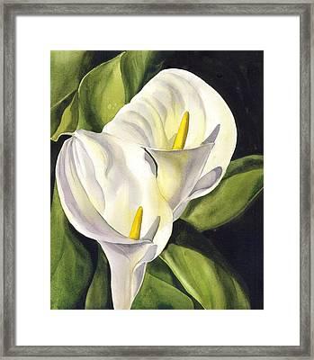 Calla Lily Framed Print by Alfred Ng
