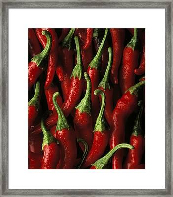 Cayenne Framed Print by Daniel Troy