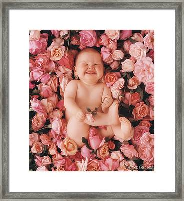 Cheesecake Framed Print by Anne Geddes