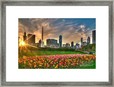 Chicago Spring Framed Print by Jeff Lewis