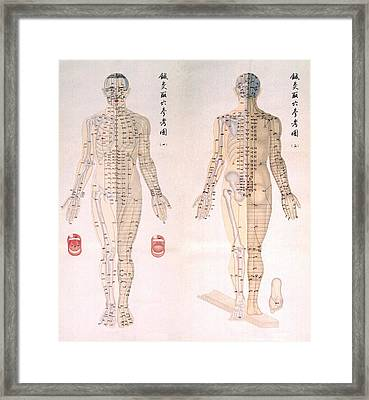 Chinese Chart Of Acupuncture Points Framed Print by Everett