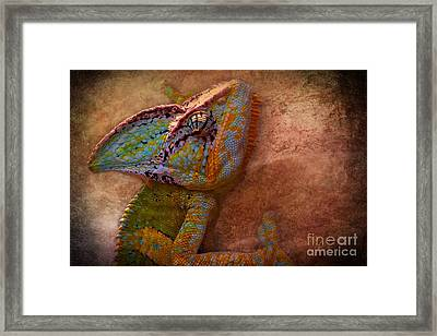 Colored Framed Print by Angela Doelling AD DESIGN Photo and PhotoArt