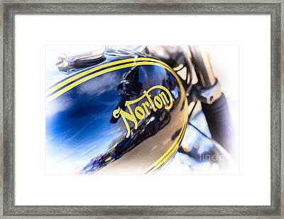 Commando Framed Print by Tim Gainey