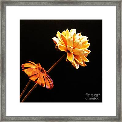 Contemporary Natural Flowers Framed Print by Marsha Heiken