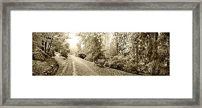 Country Road Framed Print by Sean Davey