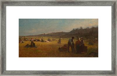 Cranberry Pickers Framed Print by Mountain Dreams