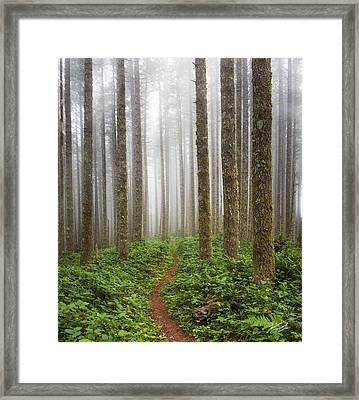 Cummins Wilderness Trail Framed Print by Leland D Howard