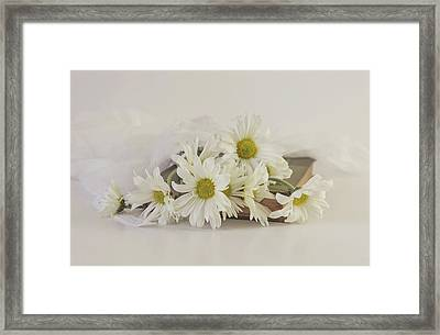 Little Miss Daisy Framed Print by Kim Hojnacki