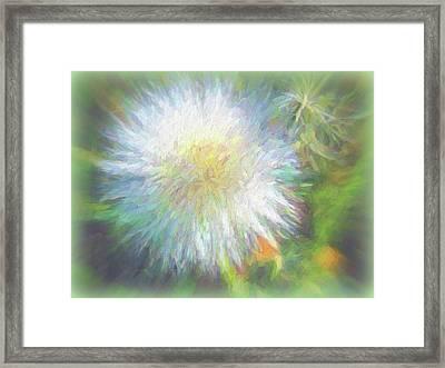 Dandy Day Framed Print by Kathy Bassett