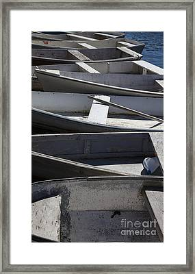 Dory Row Framed Print by Timothy Johnson