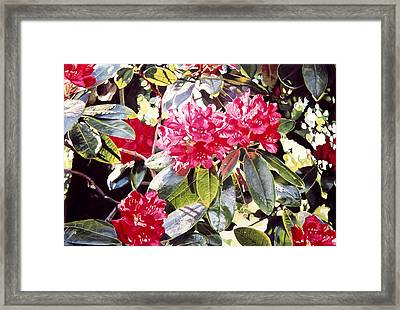 Dreaming Of April Framed Print by David Lloyd Glover
