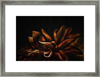 Elegance Framed Print by Bonnie Bruno