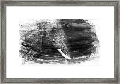 Elephant Framed Print by Martin Newman