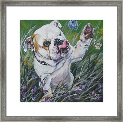 English Bulldog Framed Print by Lee Ann Shepard