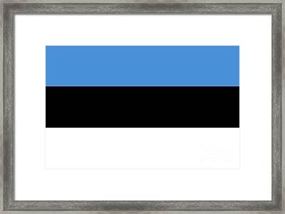 Estonia Flag Framed Print by Frederick Holiday