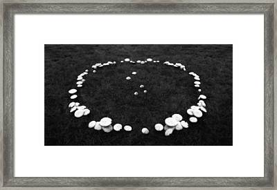 Fairy Ring Framed Print by Mark Wagoner