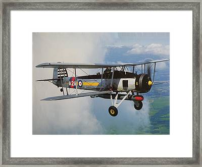 Fairy Swordfish Framed Print by Ted Denyer
