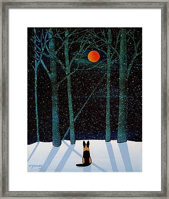 Falling Snow Framed Print by Todd Young