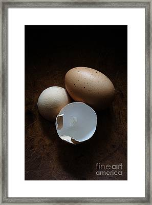 Farm Fresh Eggs Framed Print by Edward Fielding