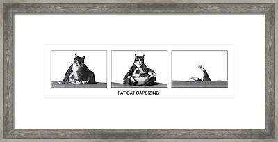 Fat Cat Capsizing Framed Print by Richard Watherwax