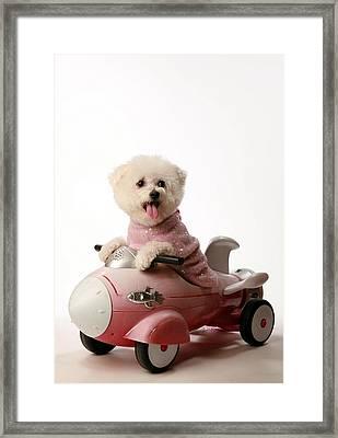 Fifi Loves Her Rocket Car  Framed Print by Michael Ledray
