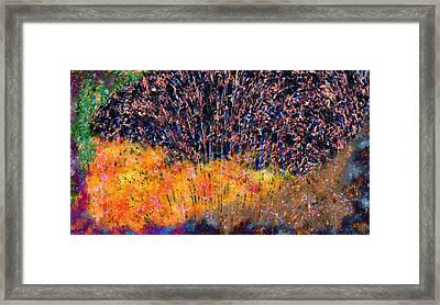 Fireworks Framed Print by Christopher Gaston