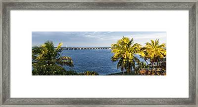 Florida Keys Framed Print by Elena Elisseeva