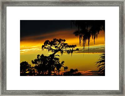 Central Florida Sunset Framed Print by David Lee Thompson