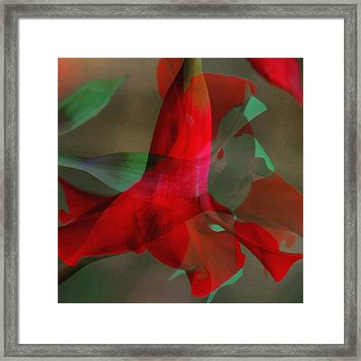 Flowers Framed Print by Contemporary Art