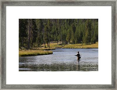 Fly Fishing In The Firehole River Yellowstone Framed Print by Dustin K Ryan