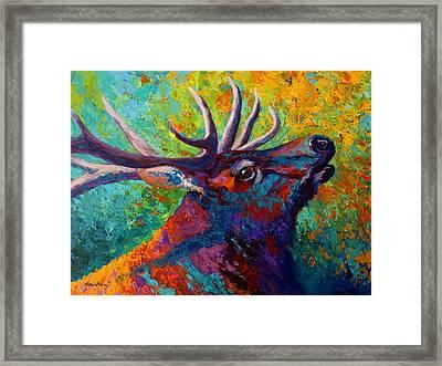 Forest Echo - Bull Elk Framed Print by Marion Rose