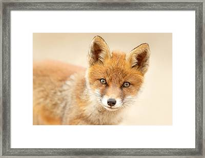 Foxy Face Framed Print by Roeselien Raimond