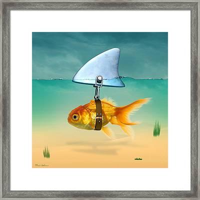 Gold Fish  Framed Print by Mark Ashkenazi