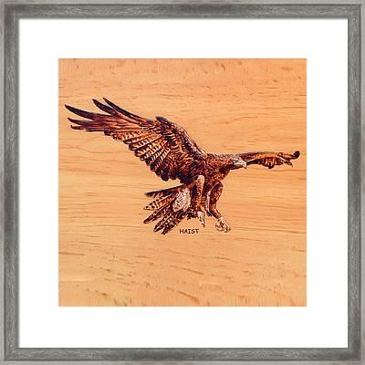 Golden Eagle Framed Print by Ron Haist