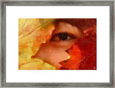 Goodbye Summer Framed Print by Gun Legler