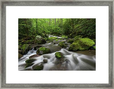 Great Smoky Mountains Roaring Fork Framed Print by Mark VanDyke
