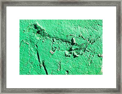 Green Background Framed Print by Tom Gowanlock