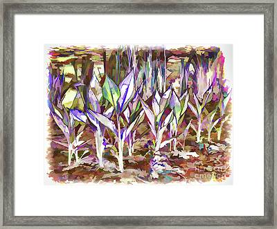 Green Plant Framed Print by Lanjee Chee