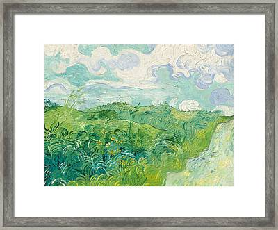 Green Wheat Fields   Auvers Framed Print by Vincent Van Gogh