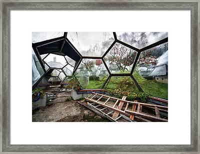 Greenhouse Experiment - Urban Decay Framed Print by Dirk Ercken