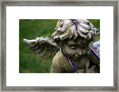 Guardian Framed Print by Off The Beaten Path Photography - Andrew Alexander