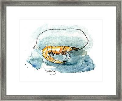 Gulf Shrimp Framed Print by Paul Gaj