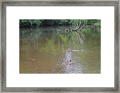 Happy Mothers Day Framed Print by Asbed Iskedjian