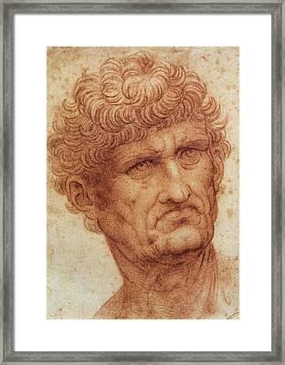 Head Of A Man Framed Print by Leonardo da Vinci