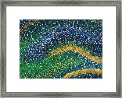 Hippocampus Brain Tissue Framed Print by Thomas Deerinck, Ncmir